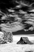Palouse Region (IR)
